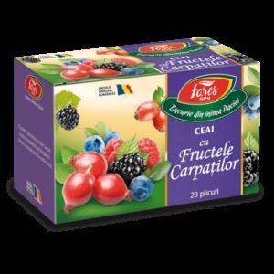 fructele carpatilor