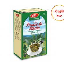 Măslin, frunze, F189, ceai la pungă