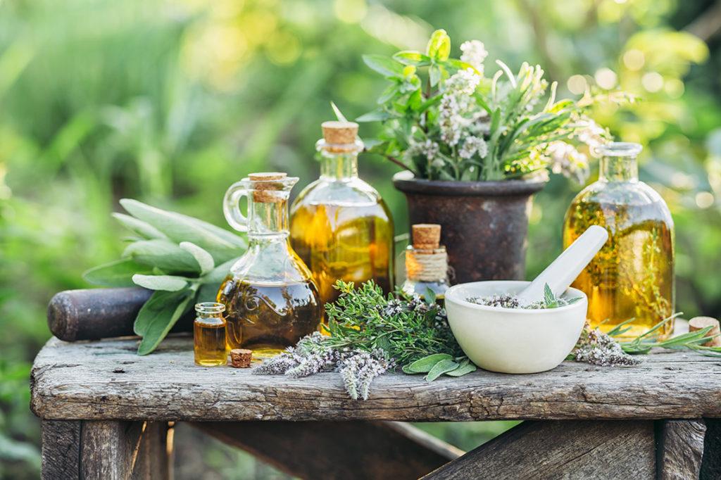 beneficii tratamente antivirale cu plante medicinale