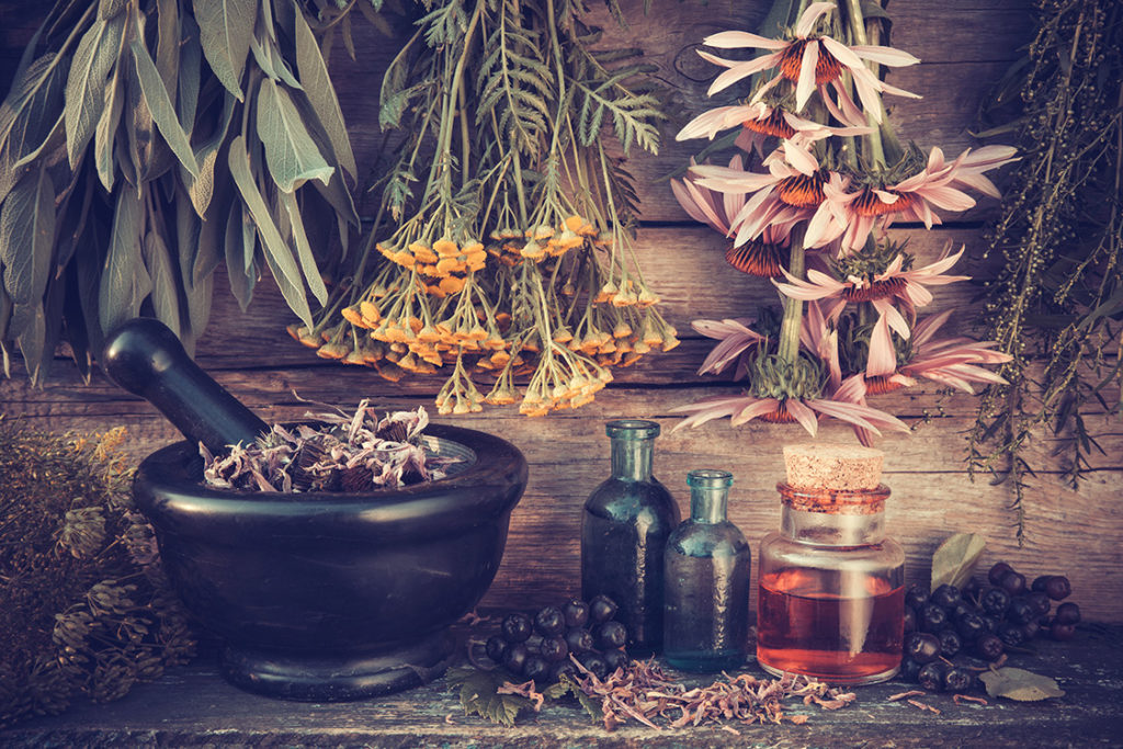 Beneficiile antivirale ale plantelor medicinale