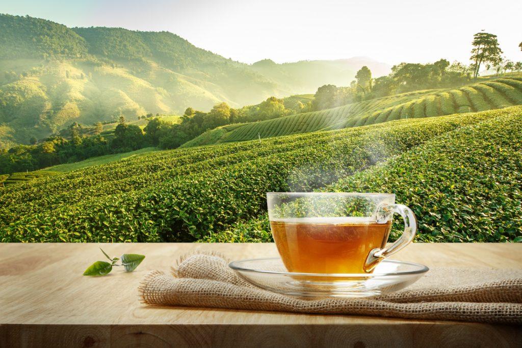 trament naturist pentru imunitate cu ceaiuri
