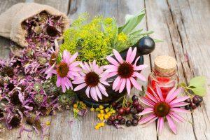 tratamente naturale din plante